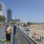 Barceloneta, Maremagnum and the Old Port