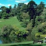 Botanic Gardens Melbourne and Painting aborigene