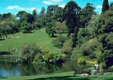 © M. FaggAustralian National Botanic Gardens