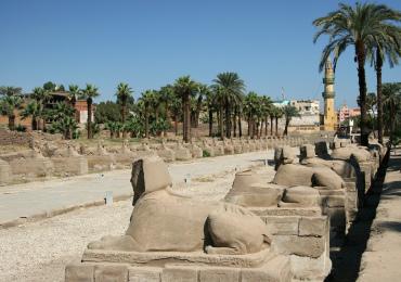 avenue-sphinxes-Luxor-egypt6
