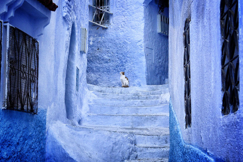 marocco-citta-muri-blu-chefchaouen-005